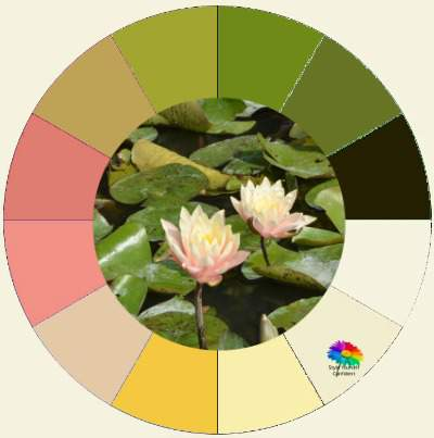 Color Analysis in Nature  #color analysis #color analysis in nature #color palettes #water lilies  http://www.style-yourself-confident.com/color-analysis-in-nature.html