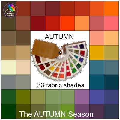 Fabric color swatches #colorswatch  https://www.style-yourself-confident.com