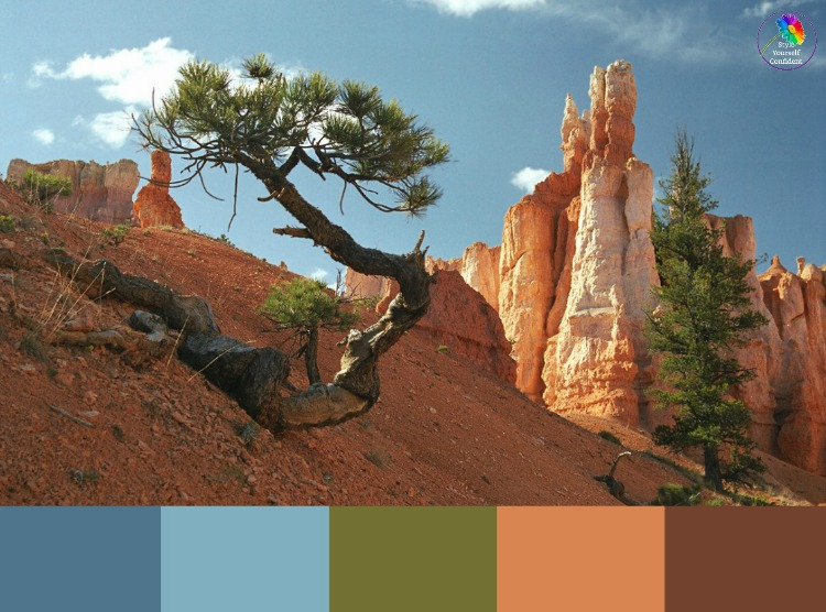 Color Analysis in Nature  #color analysis #color analysis in nature #color palettes https://www.style-yourself-confident.com/color-analysis-in-nature.html