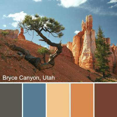 Color Analysis in Nature - nature always gets it right! http://www.style-yourself-confident.com/color-analysis-in-nature.html