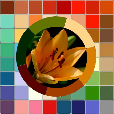 Color Analysis in Nature - nature always gets it right! https://www.style-yourself-confident.com/color-analysis-in-nature.html