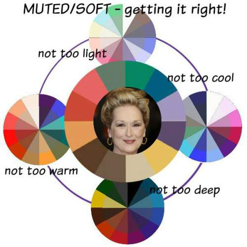 The MUTED Color Family Analysis Muted Meryl Streep