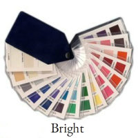 The Bright color swatch encompasses the brightest shades from both Spring and Winter https://www.style-yourself-confident.com/color-analysis-swatch.html