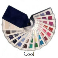 Color Analysis Cool fabric swatch. 45 colors. #color analysis #cool coloring http://www.style-yourself-confident.com/color-analysis-cool.html