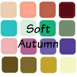 Image result for soft autumn fashion colours